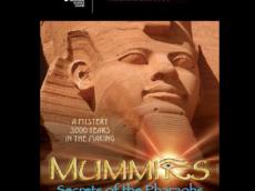 Watch IMAX Documentaries