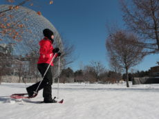 outdoor activities at Jean-Drapeau Park