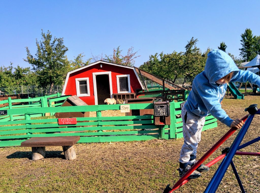 Apple orchard site for new day camp