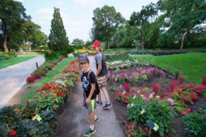 Botanical Garden awash with beauty