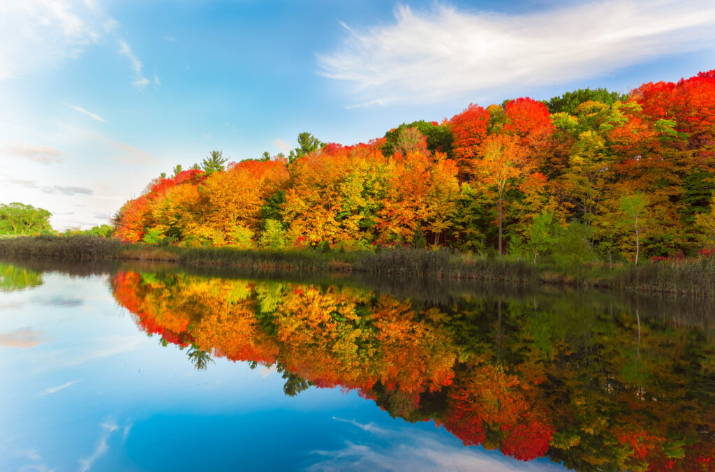 Fall foliage celebrations in Townships