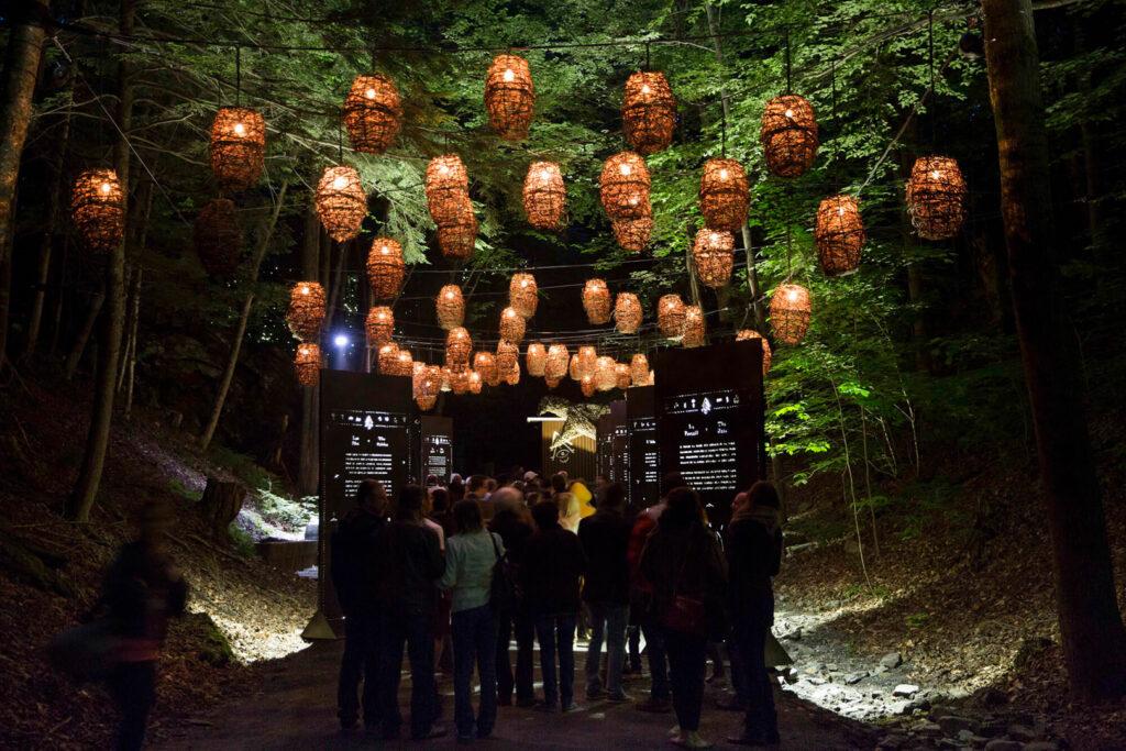 Illuminated nighttime trail in Coaticook